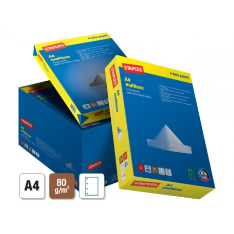 Papier SPLS A4 80g Multi 4gt/ds5x500v