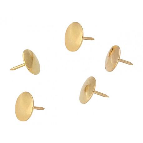 Punaise SPLS goud/pak 100