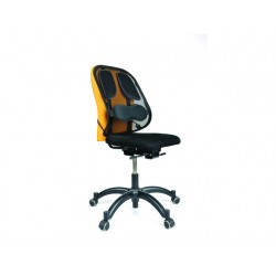Rugsteun Fellowes Professional