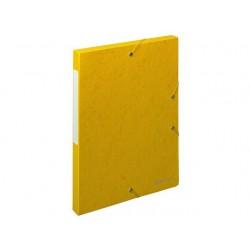 Dossierbox Exacompta NF A4 25mm gl/pk10