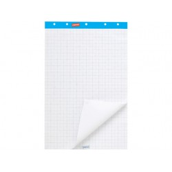 Flipoverpapier SPLS 65x100 recy/ds2x50v