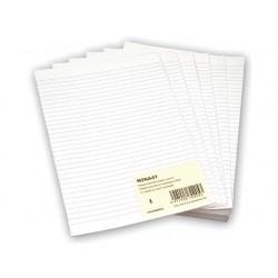 Papier Minister dubbel A4 lijn/pak 240v