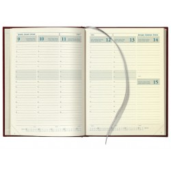 Agenda Business 2915 7d2p 6t zwart