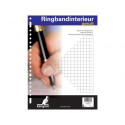 Interieurpap. 23R 60g ruit 10mm/pk10x100